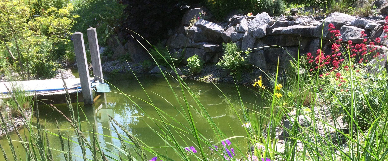 Étang de baignade et bassin à Rosheim.