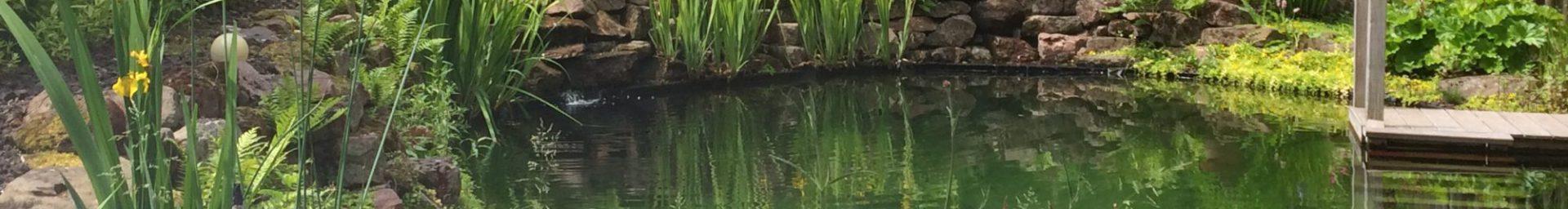 Réserve d'incendie aménagée en étang de baignade près de Strasbourg