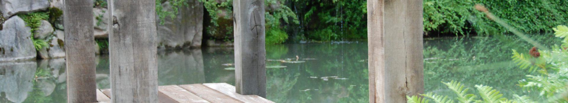 Ponton en bois sur bassin de jardin avec ses Koïs