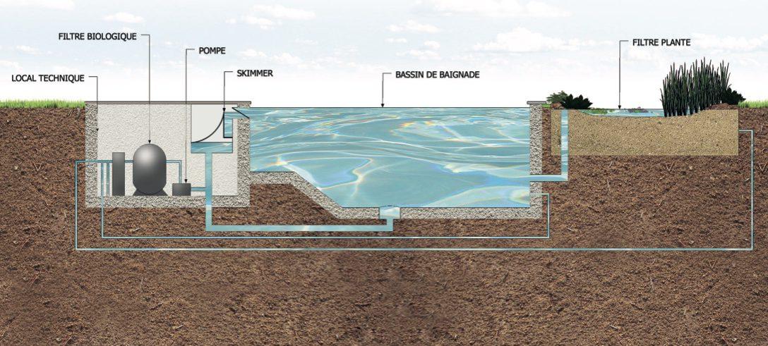 Filtration biologique pour bassin à Koïs, etang de baignade, baignade naturelle et piscine écologique.