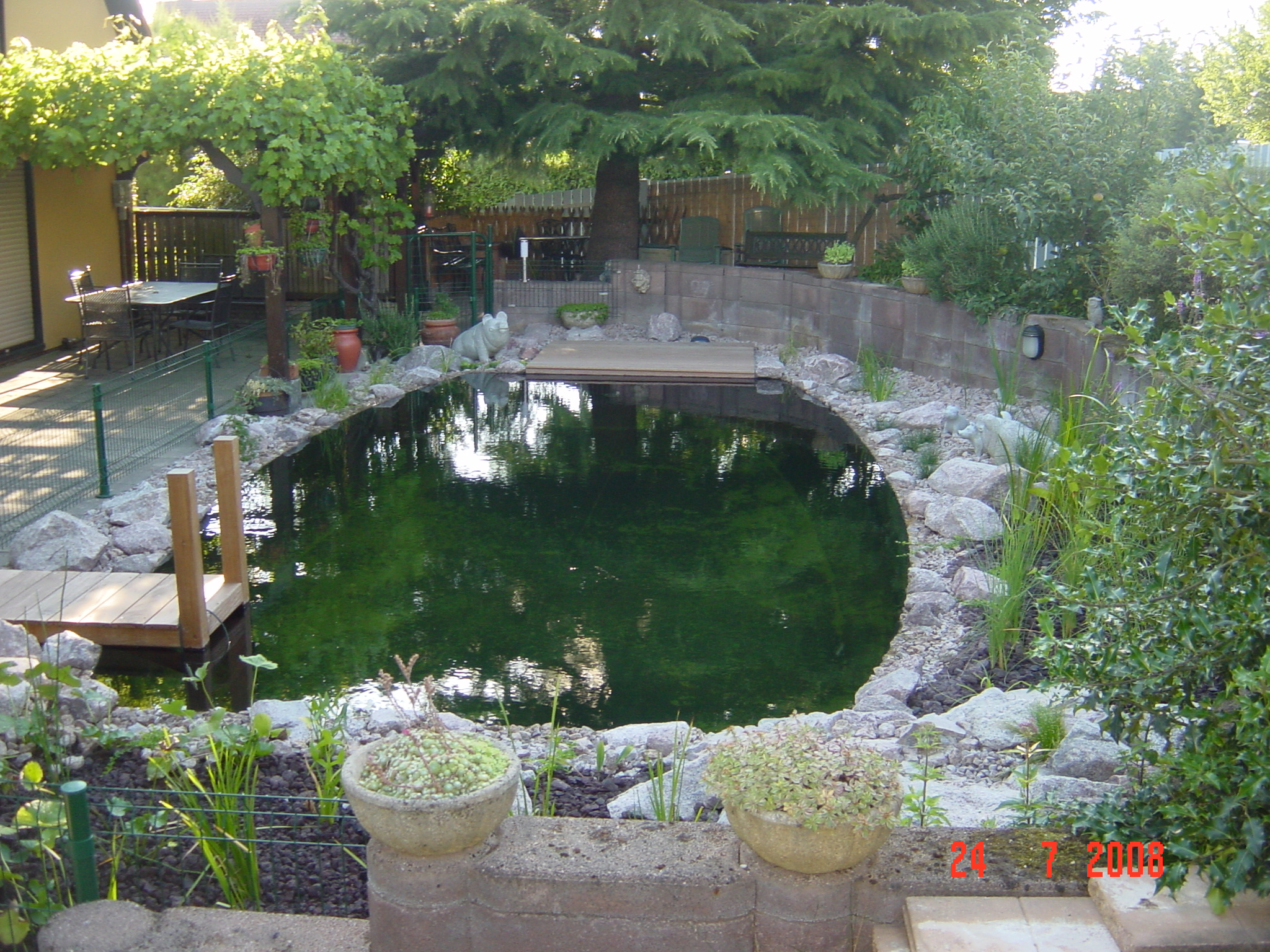 Transformation d une piscine en baignade naturelle barr for Transformation piscine