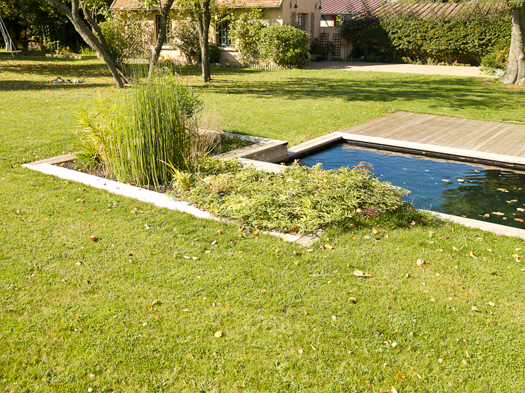 Le lagunage de la piscine naturelle